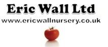 Eric Wall